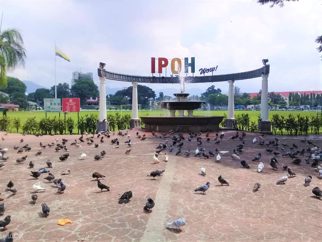 birds in front of an ipoh sign