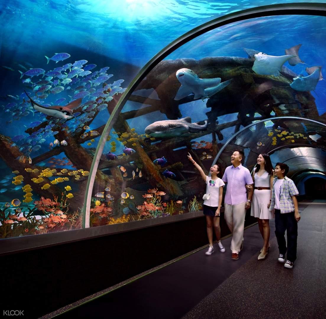 新加坡s.e.a.海洋馆