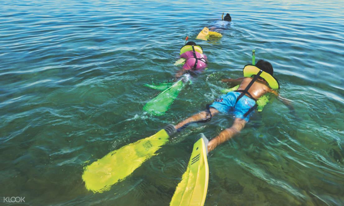 適合全家大小一起參與浮潛體驗,感受與魚群一同悠游的樂趣