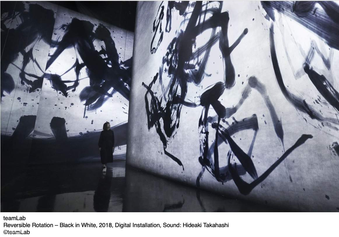Reversible Rotation – Black in White, 2018, Digital Installation, Sound: Hideaki Takahashi