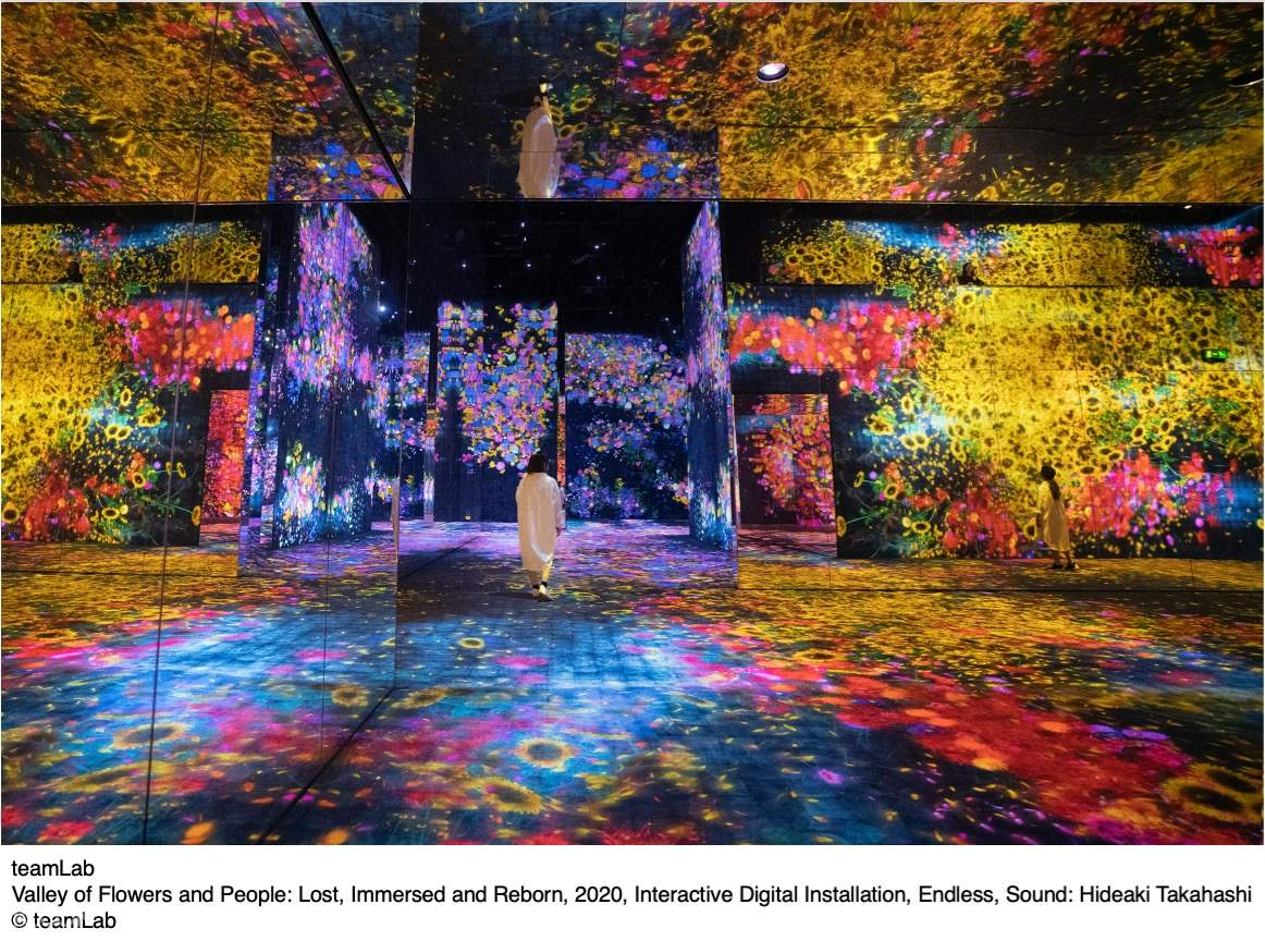 Valley of Flowers and People: Lost, Immersed and Reborn, 2020, Interactive Digital Installation, Endless, Sound: Hideaki Takahashi