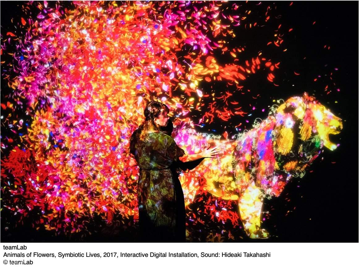 Animals of Flowers, Symbiotic Lives, 2017, Interactive Digital Installation, Sound: Hideaki Takahashi