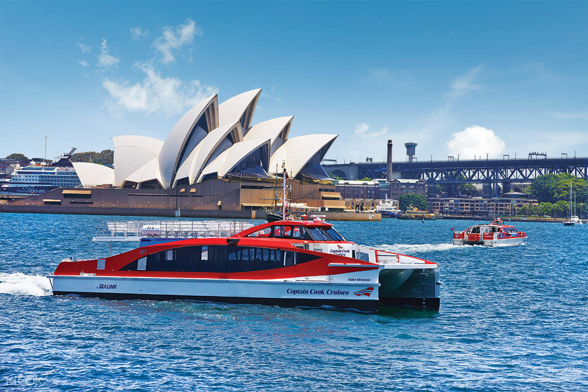 sydney hop on hop off cruise