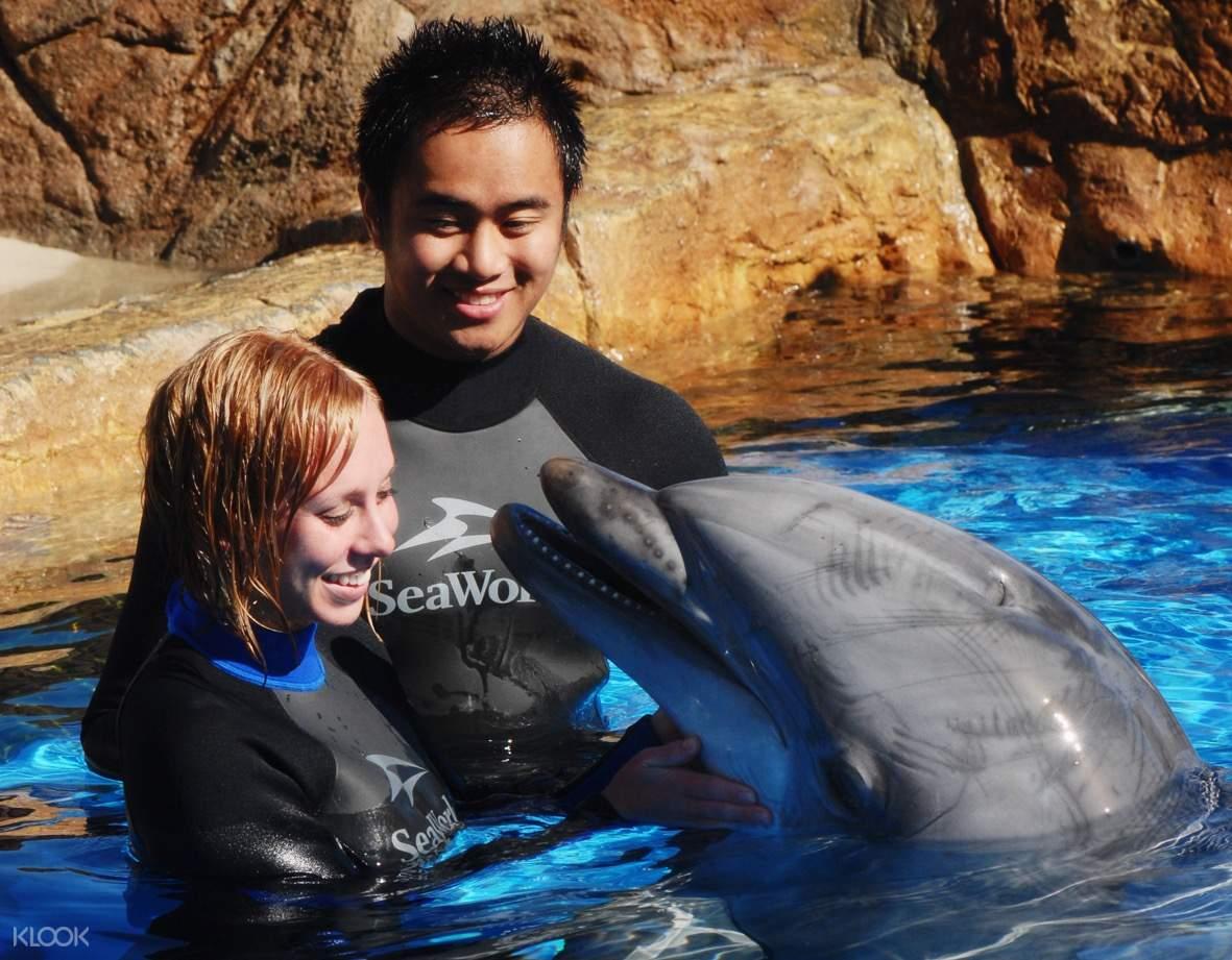 聖地亞哥海洋公園,聖地亞哥海洋公園海豚,聖地亞哥海洋公園互動,聖地亞哥海洋公園特色體驗