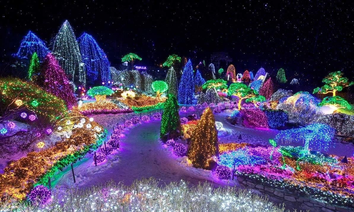 lights festival at Garden of Morning Calm
