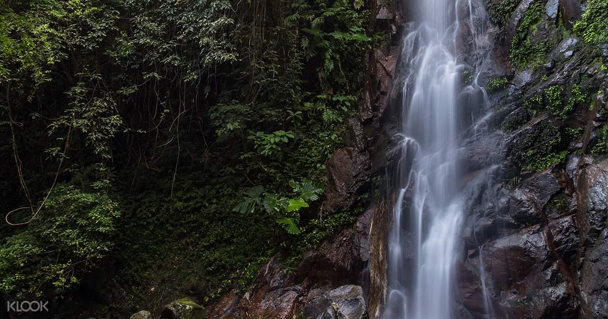 Tai Mo Shan Waterfall Hike - Klook Hong