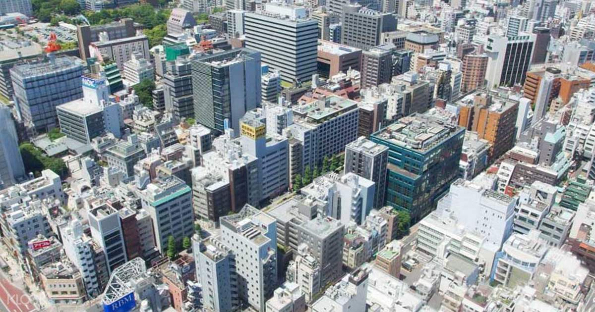 Tokyo Afternoon Tour - Klook