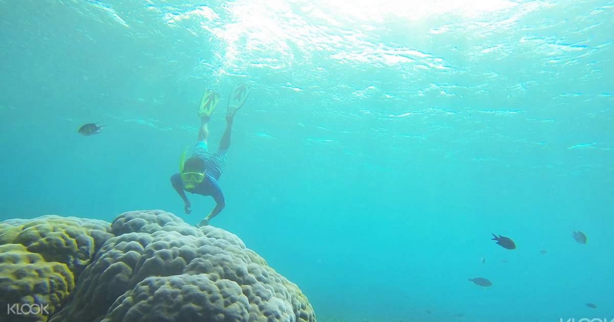 Snorkeling Amed - Klook