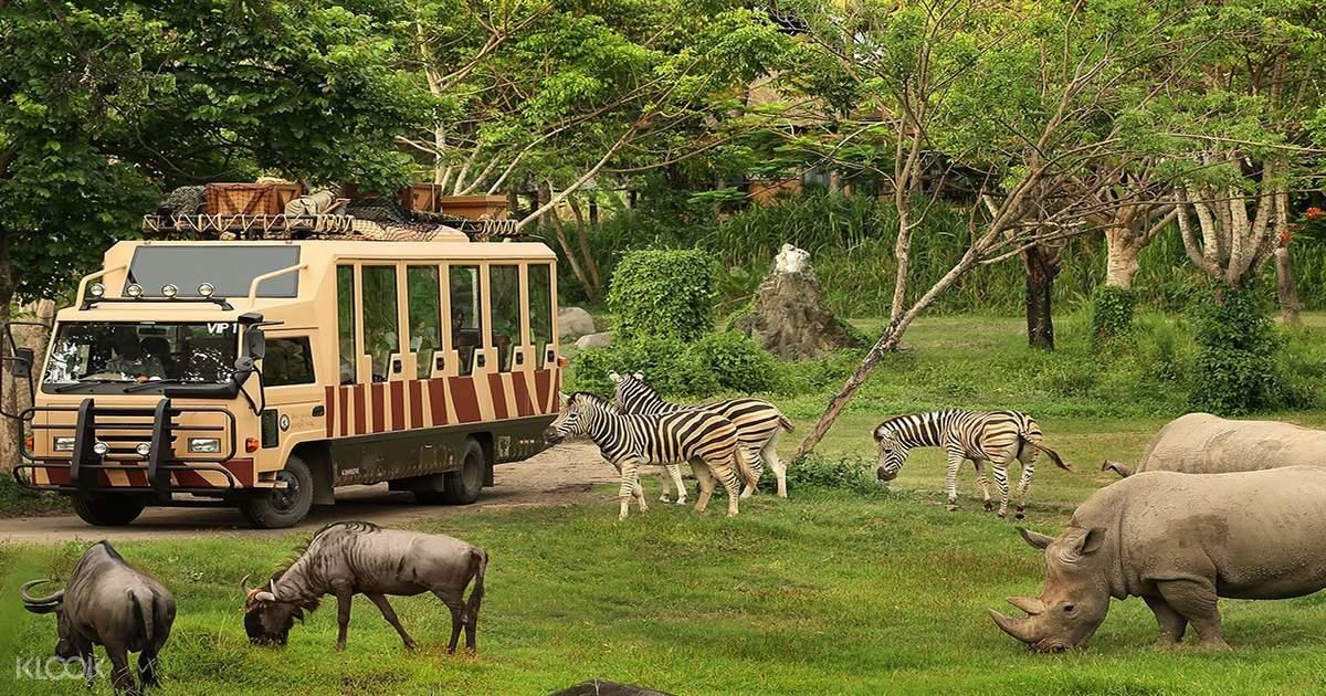 Bali Safari and Marine Park 'Rhino' with Transfers
