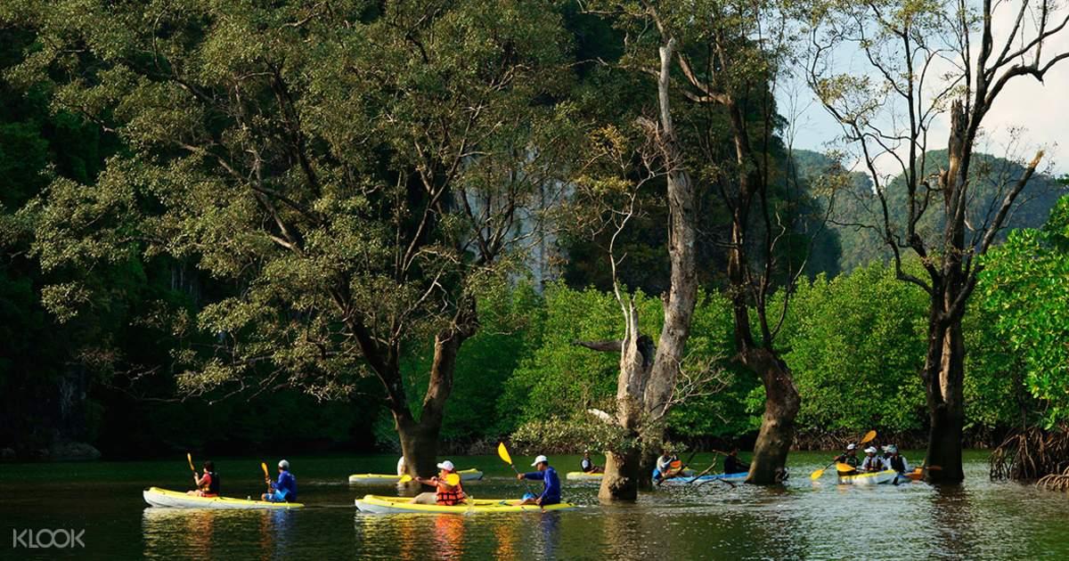 Krabi Ao Thalane Mangrove Kayak Trip - Klook