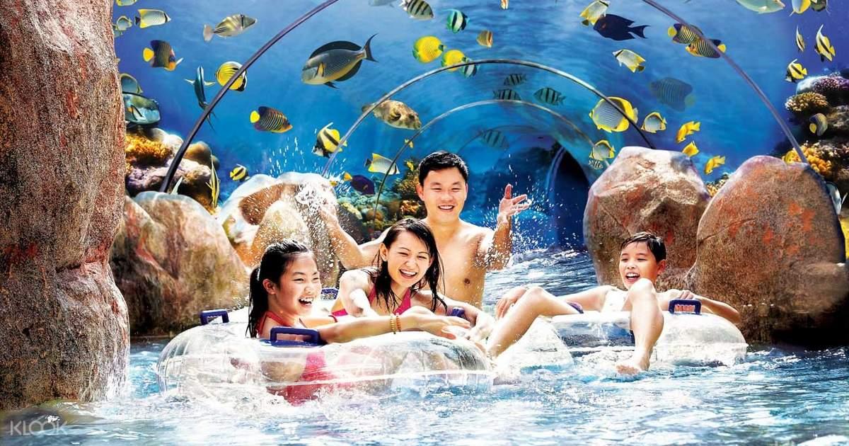 Adventure Cove Waterpark - Klook