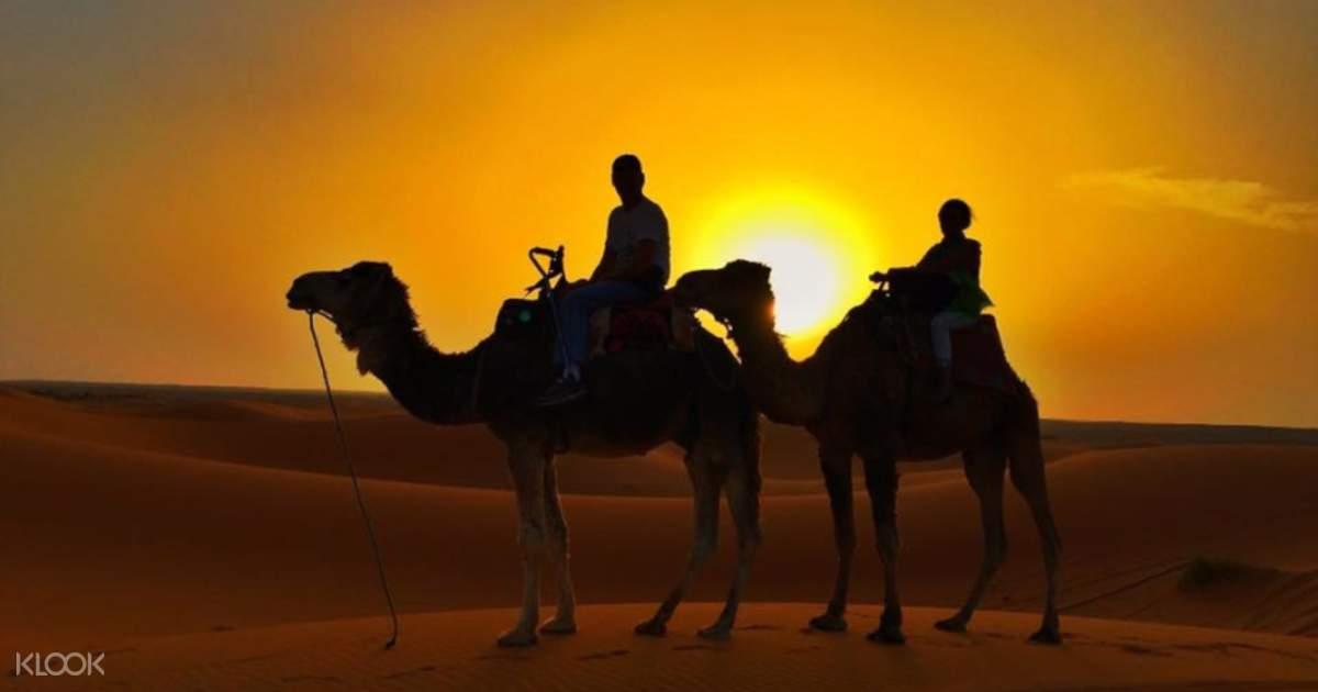 Jaisalmer Camel Day Safari - Klook