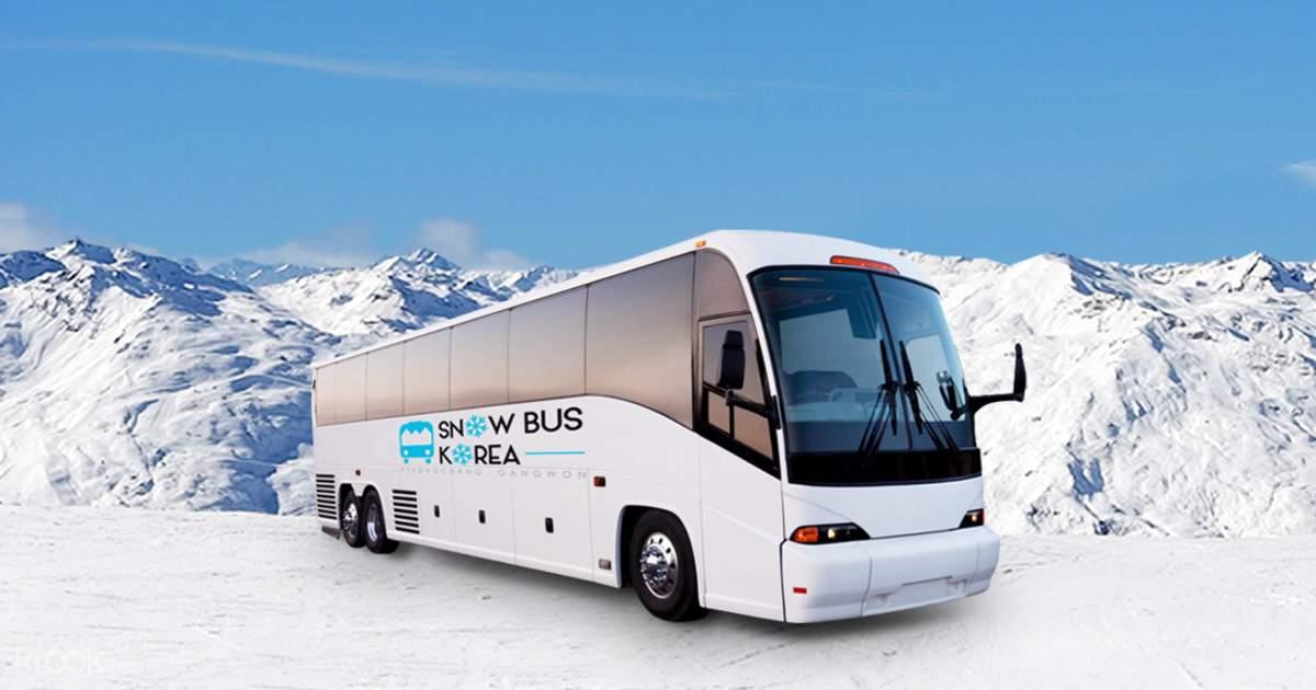 Alpensia/Yongpyong Ski Resort Shuttle Bus from Seoul - Klook