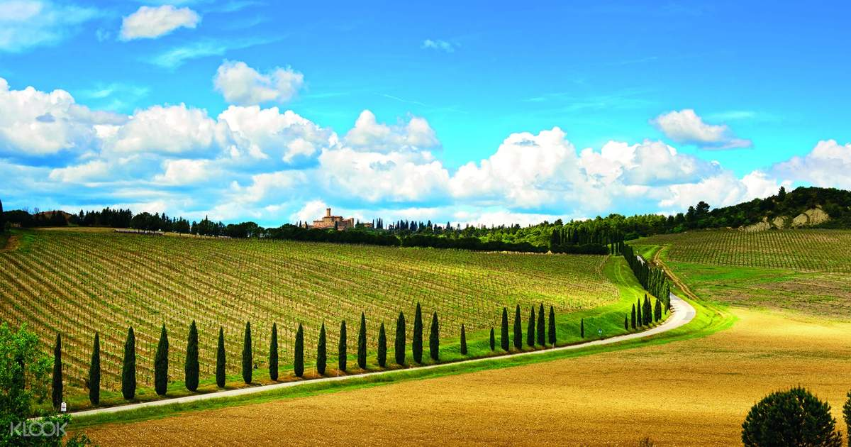 San Gimignano, Siena, and Monteriggioni Full Day Tour with