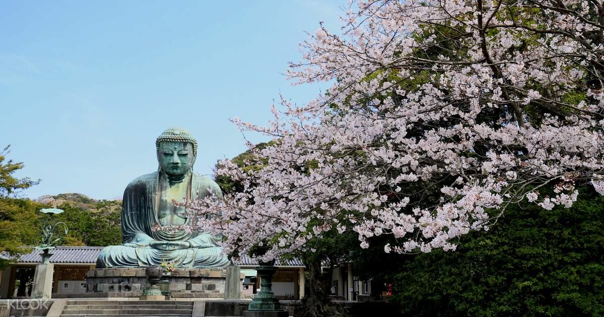 Hakone Kamakura 3-Day Ticket Pass - Klook