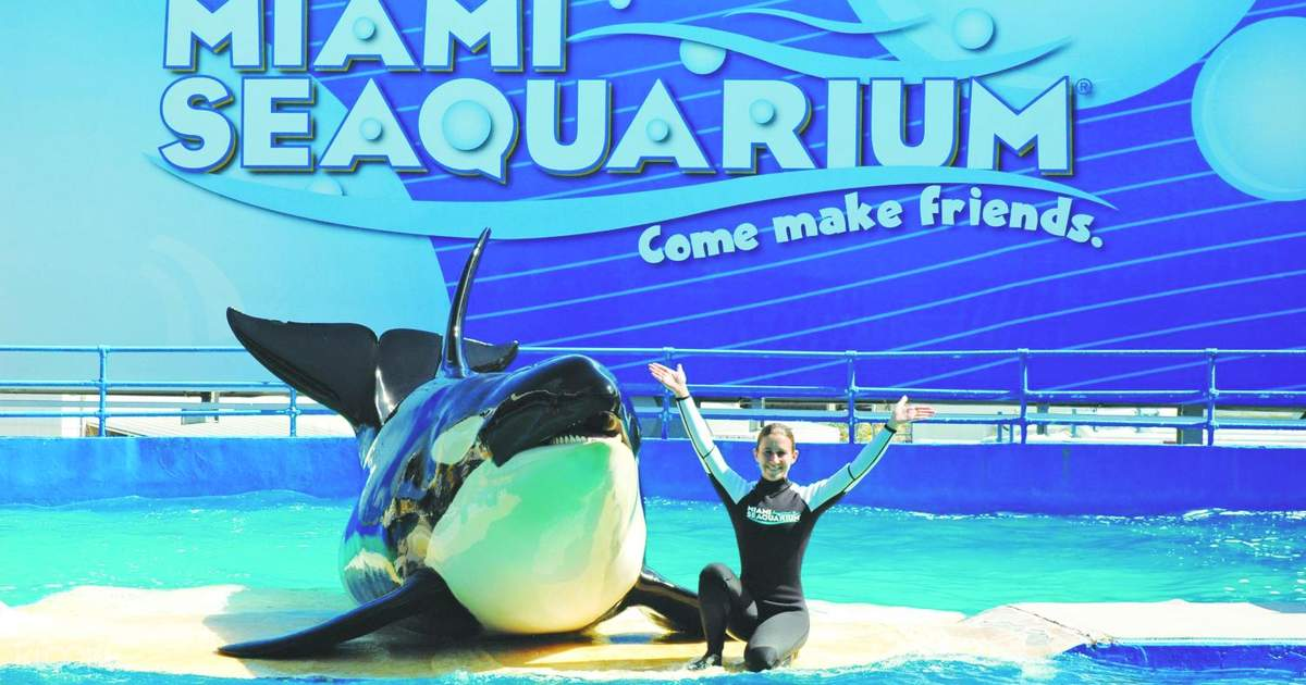 Miami Seaquarium Packages