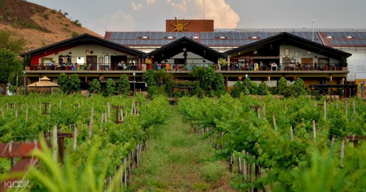 Sula Vineyards with Wine Tasting Day Tour from Mumbai