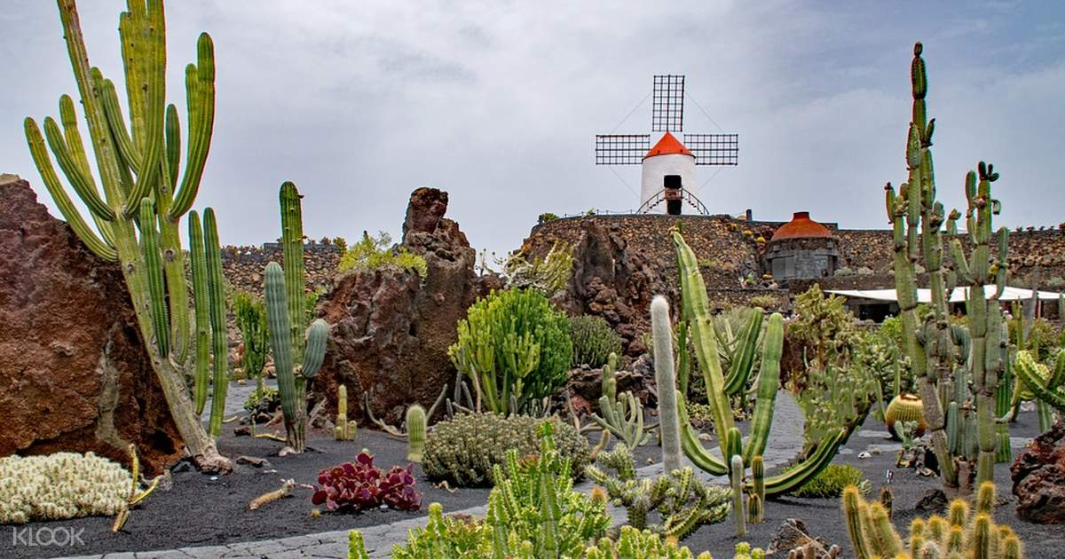 Jardin de Cactus Admission Ticket in Lanzarote - Klook