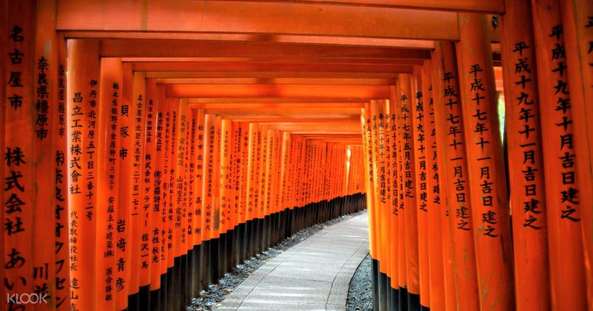 Fushimi Inari-Taisha Shrine Tour with a National Licensed Guide in ...