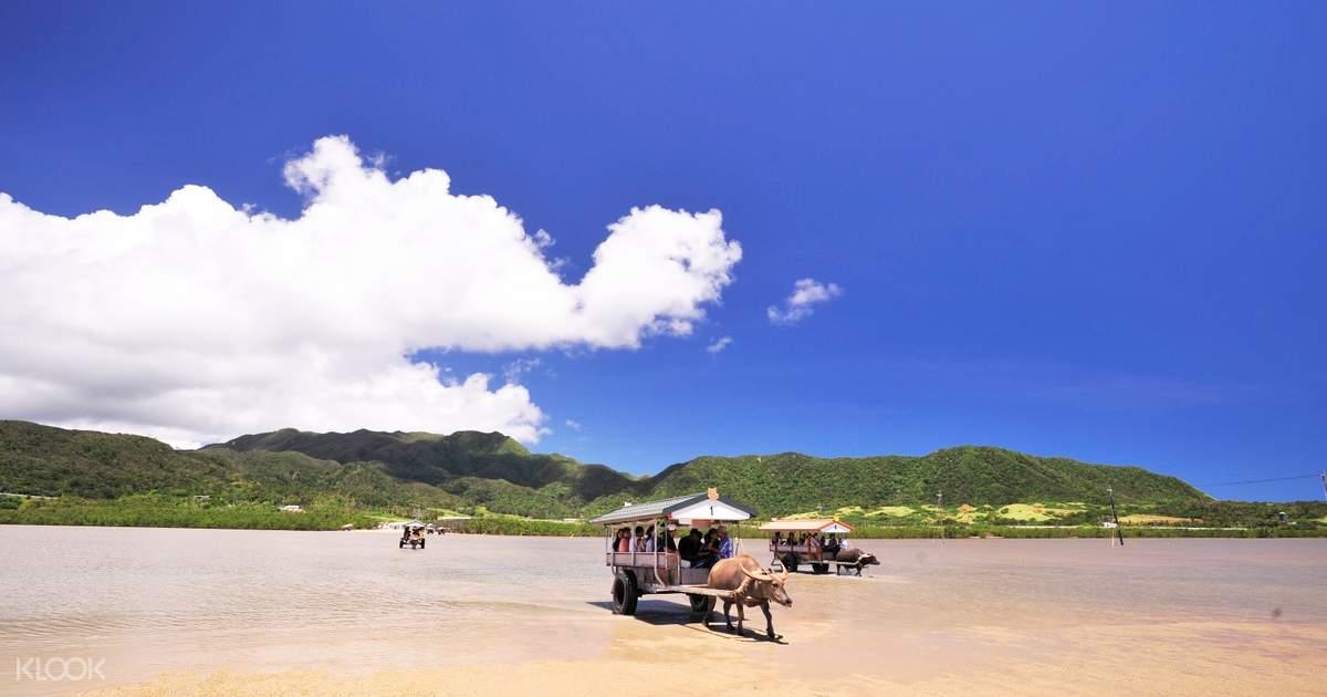 Iriomote, Yubu, Kohama, and Taketomi Islands Day Trip in