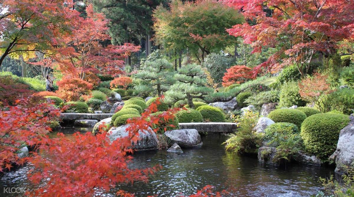 京都三室戶寺