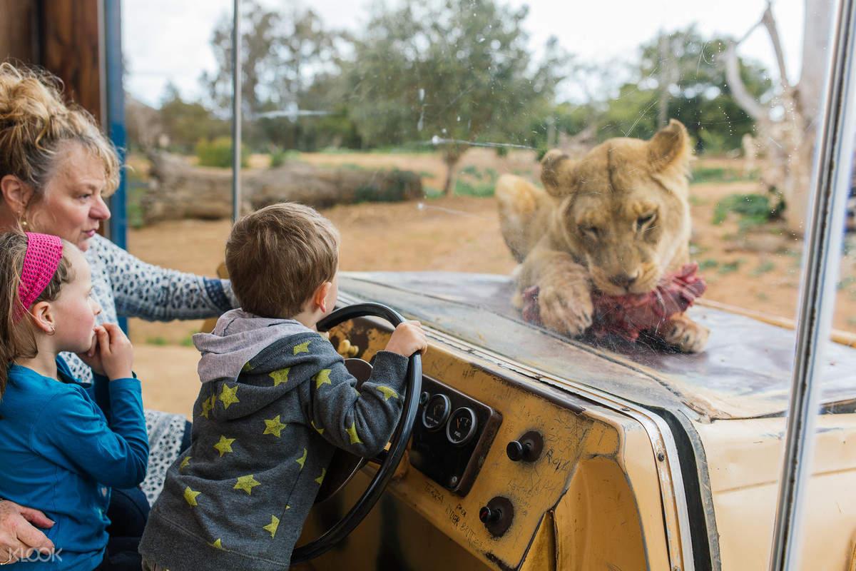Werribee Open Range Zoo General Entry