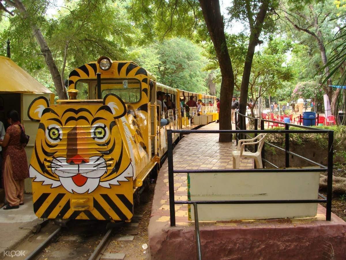 印度 海得拉巴 尼赫鲁动物园 & 野生徒步体验