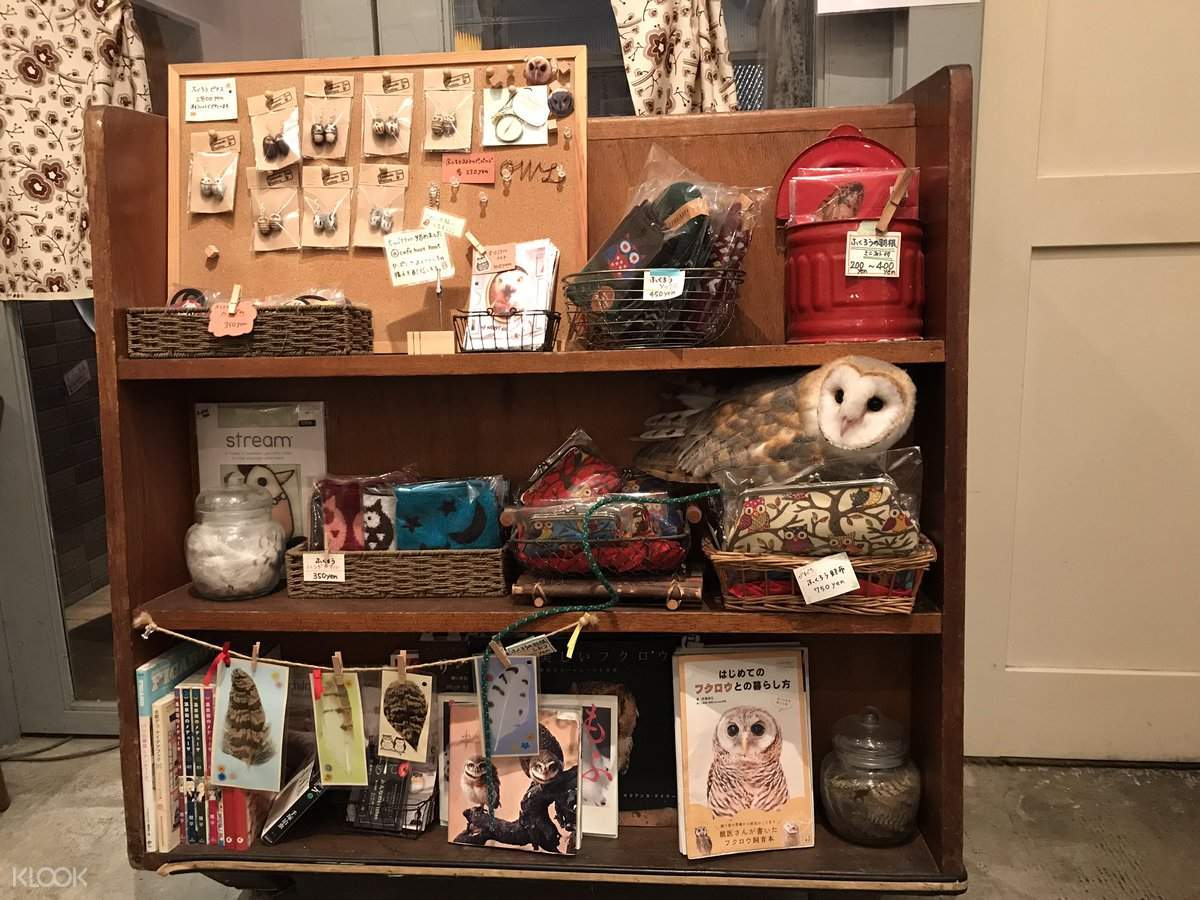 东京猫头鹰之家咖啡厅
