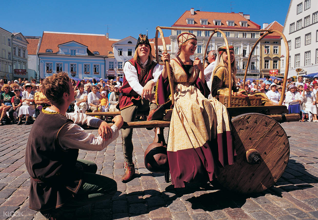 guided day tour tallinn from helsinki