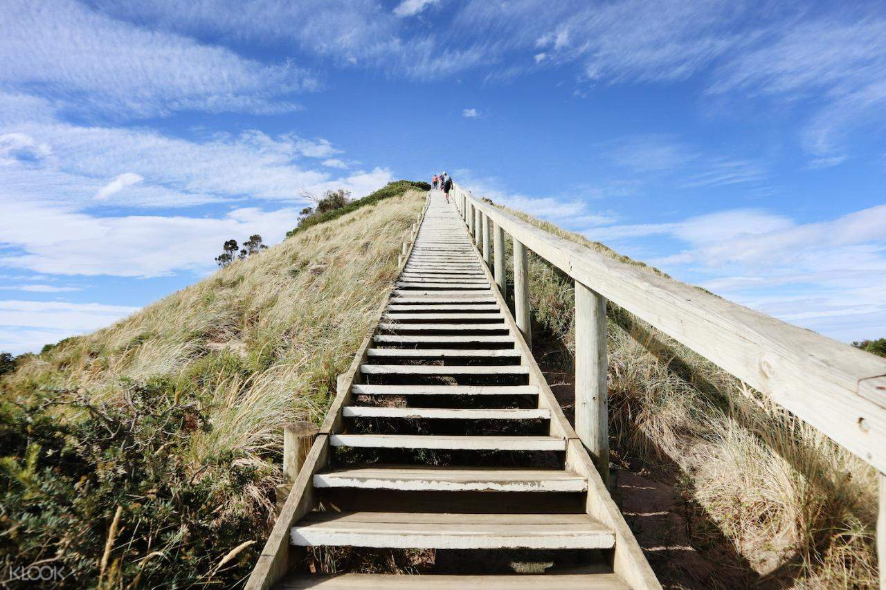 a staircase on a hill in bruny island