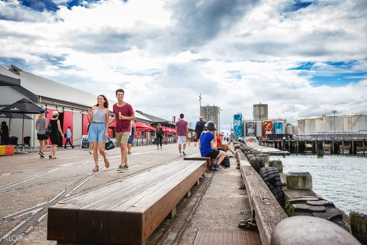 新西兰奥克兰城市观光游