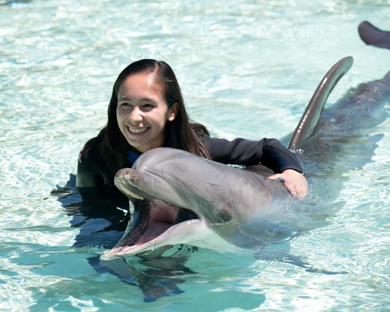 圣地亚哥海洋公园,圣地亚哥海洋公园海豚,圣地亚哥海洋公园互动,圣地亚哥海洋公园特色体验
