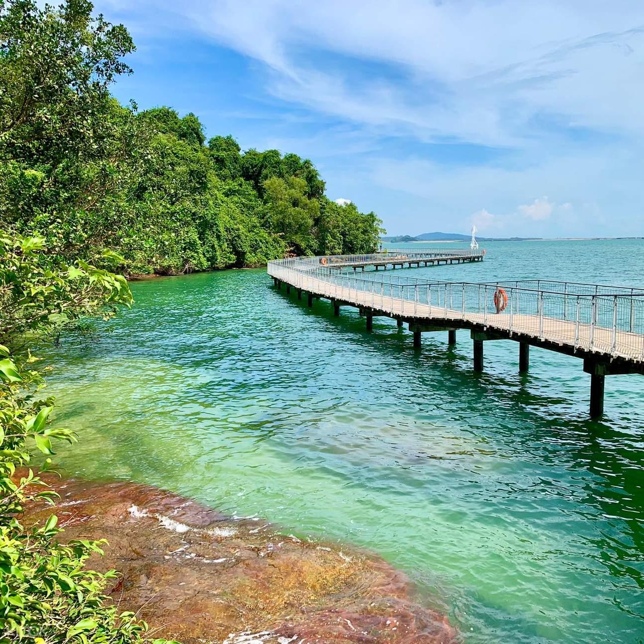 Enjoy the beautiful scenery of Chek Jawa