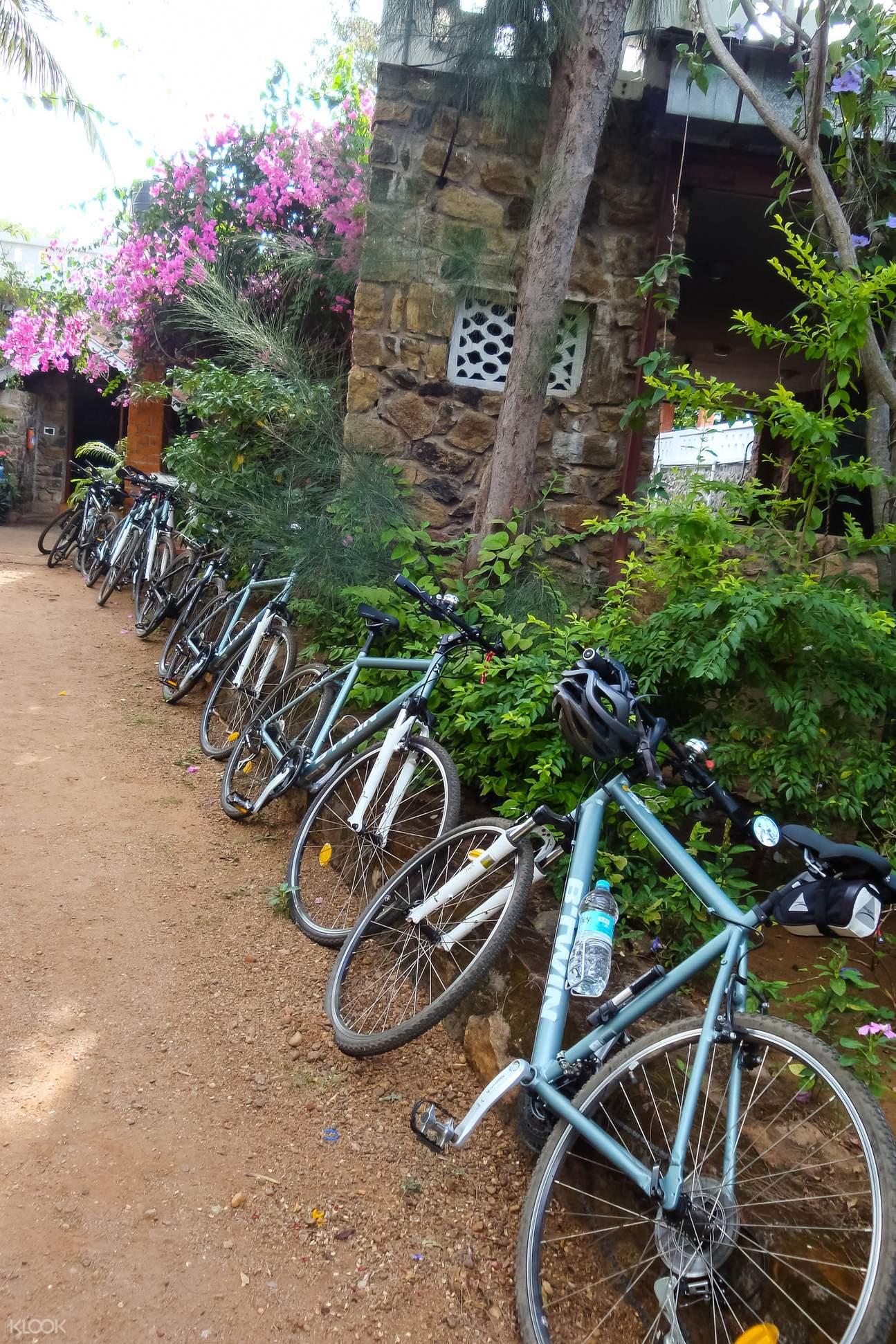 斋浦尔清晨单车骑行之旅