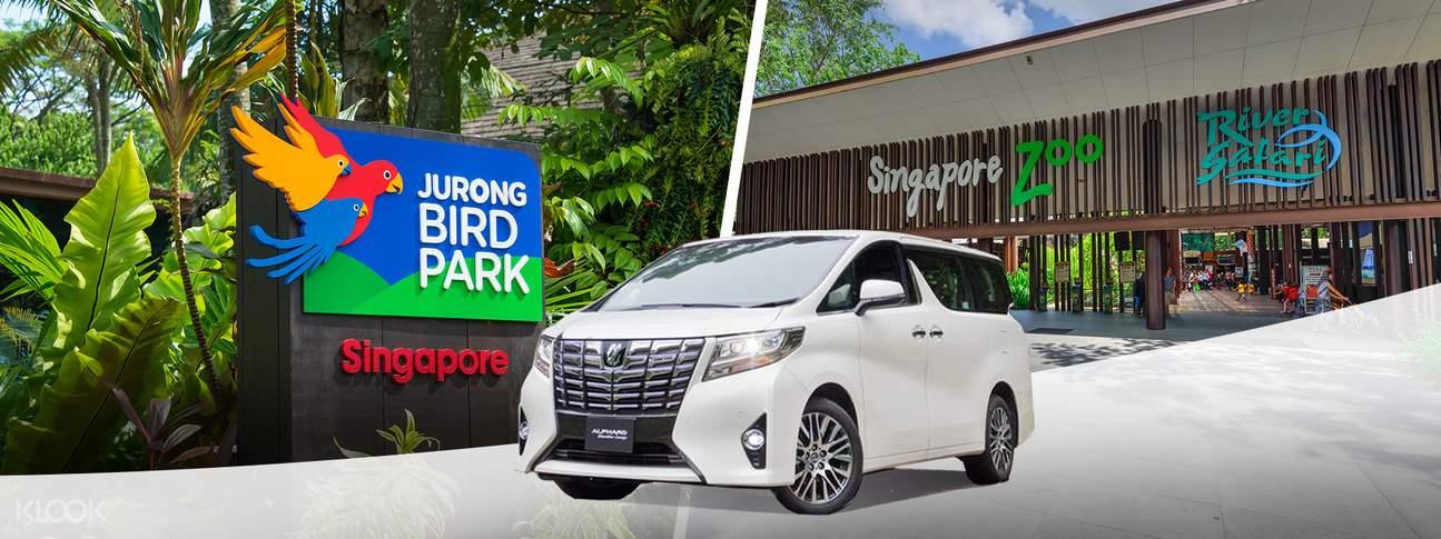 包車遊覽 新加坡野生動物園包車接送服務