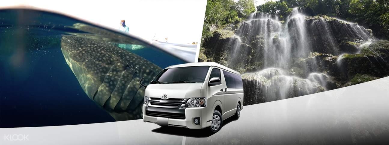 shared van transfers oslob cebu city mactan