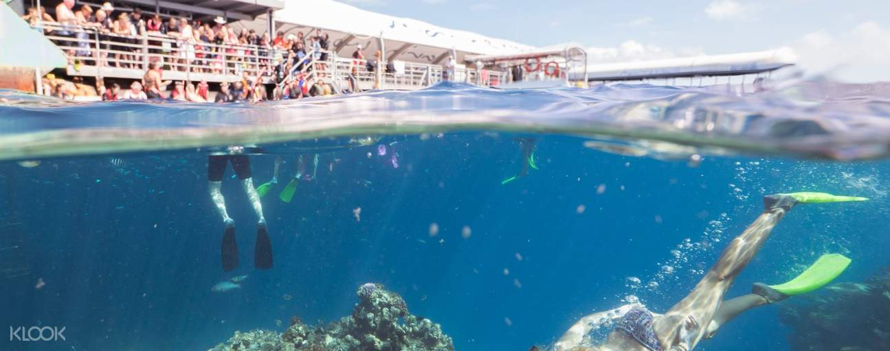 People diving in Great Barrier Reef near cruise ship