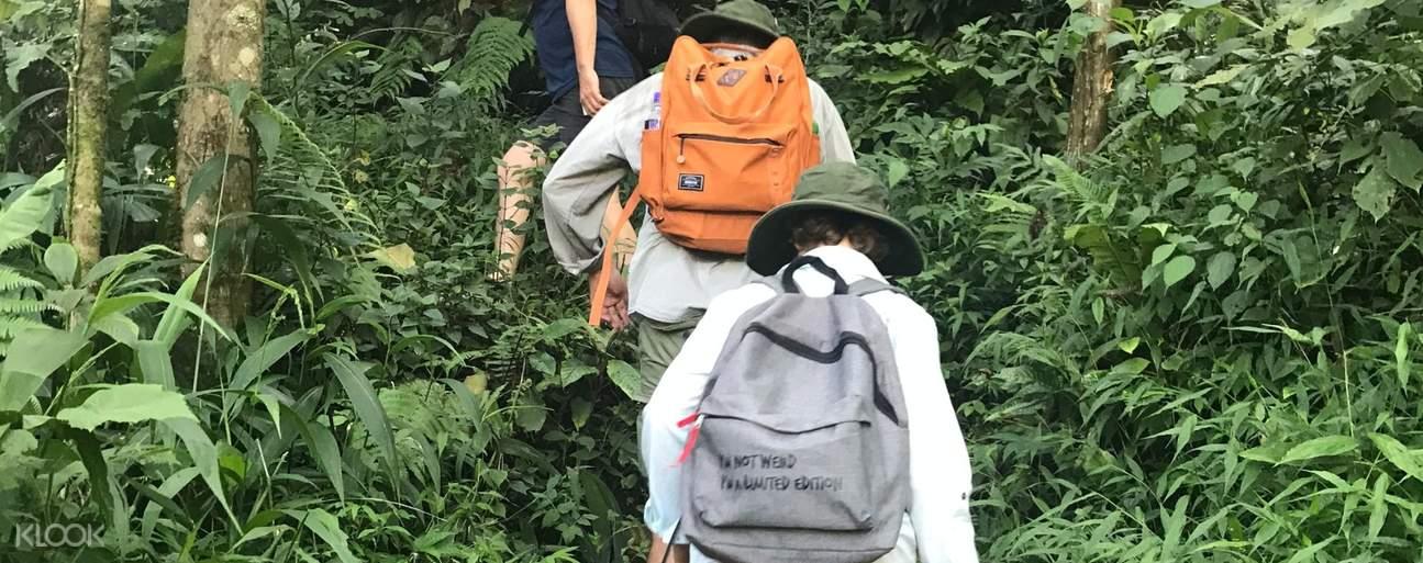 People trekking in Sapa