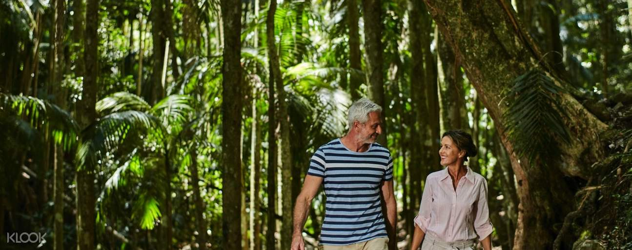 Sunshine Coast and Noosa Day Tour