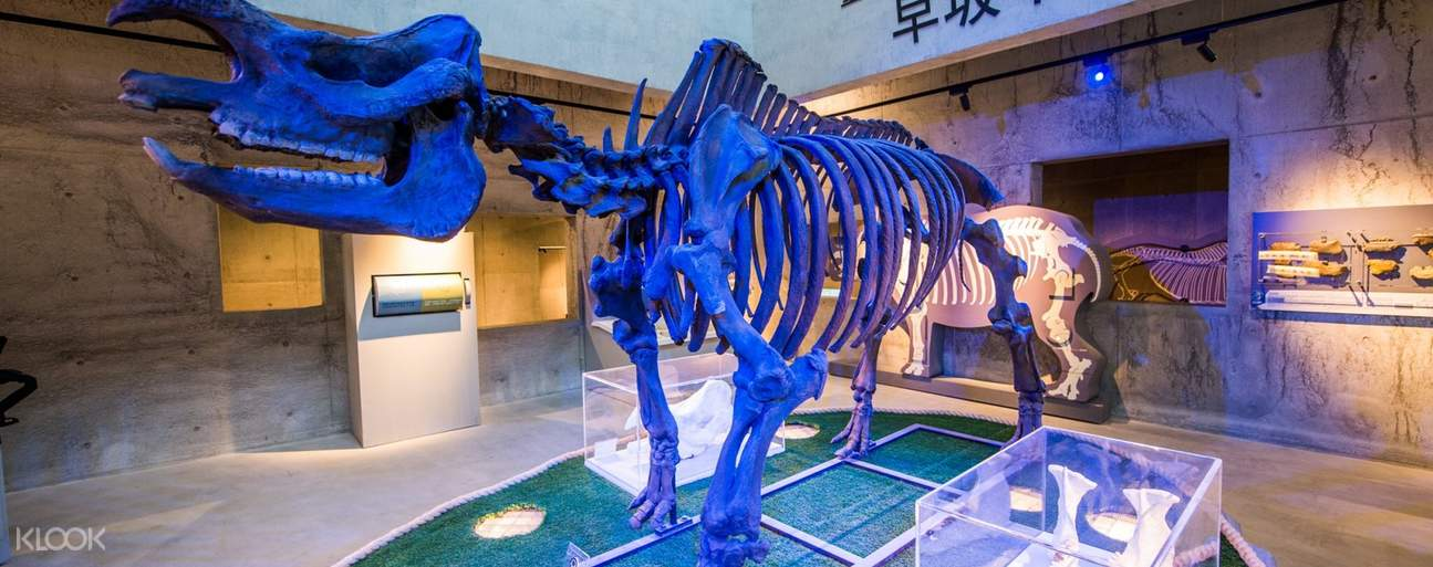 Along with various interactive devices, you will get to know the importance of the fossils of mammals in Taiwan's paleontology academia.
