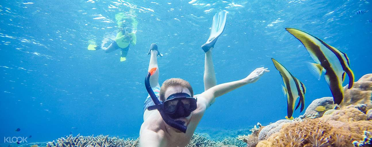 a man snorkeling near two fishes Nusa Penida Full Day Trip from Bali