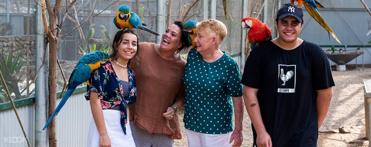 a family with parrots perched on their heads and shoulders in Bird World