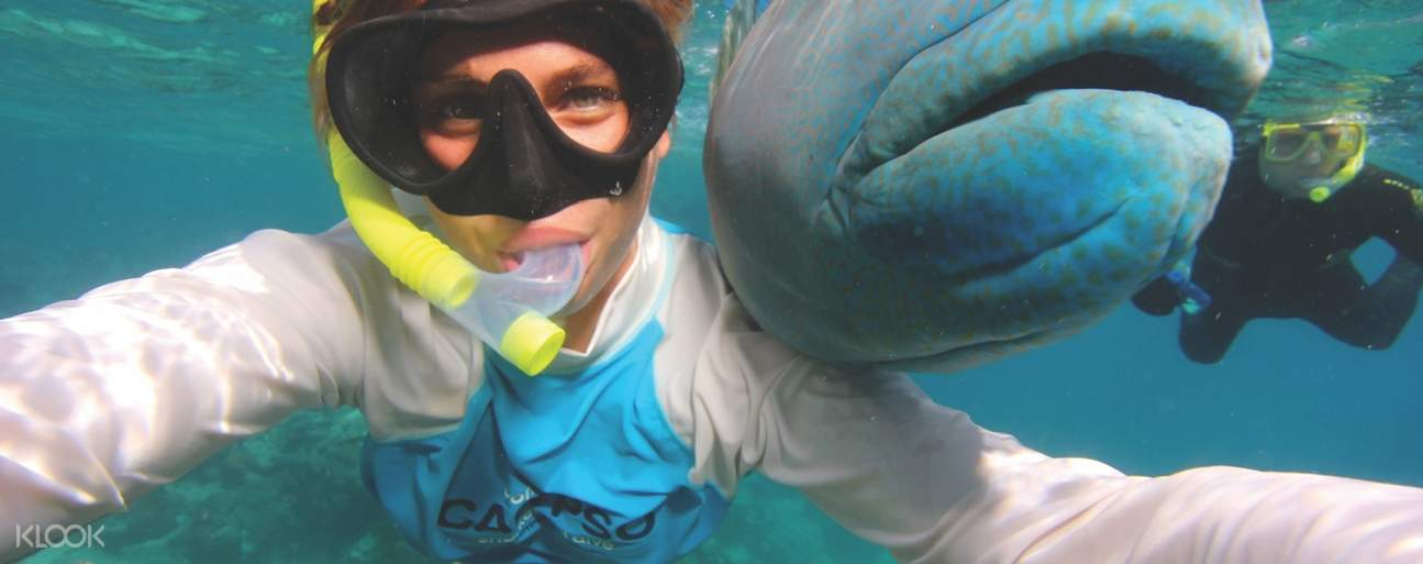 woman snorkeling with fish