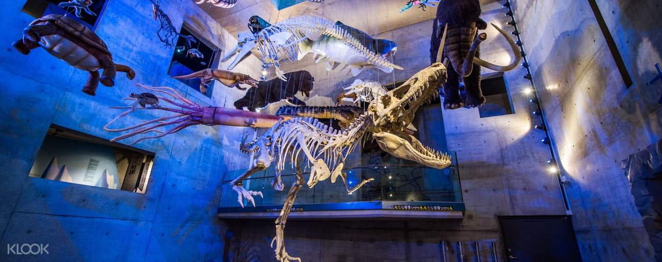 In Taiwan's most precious treasure house of fossils, you will see Taiwans' lively primates overhead.