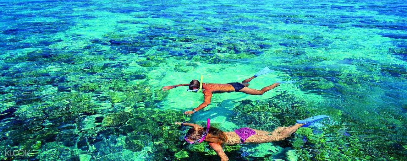 two people snorkeling in Green Island Reef