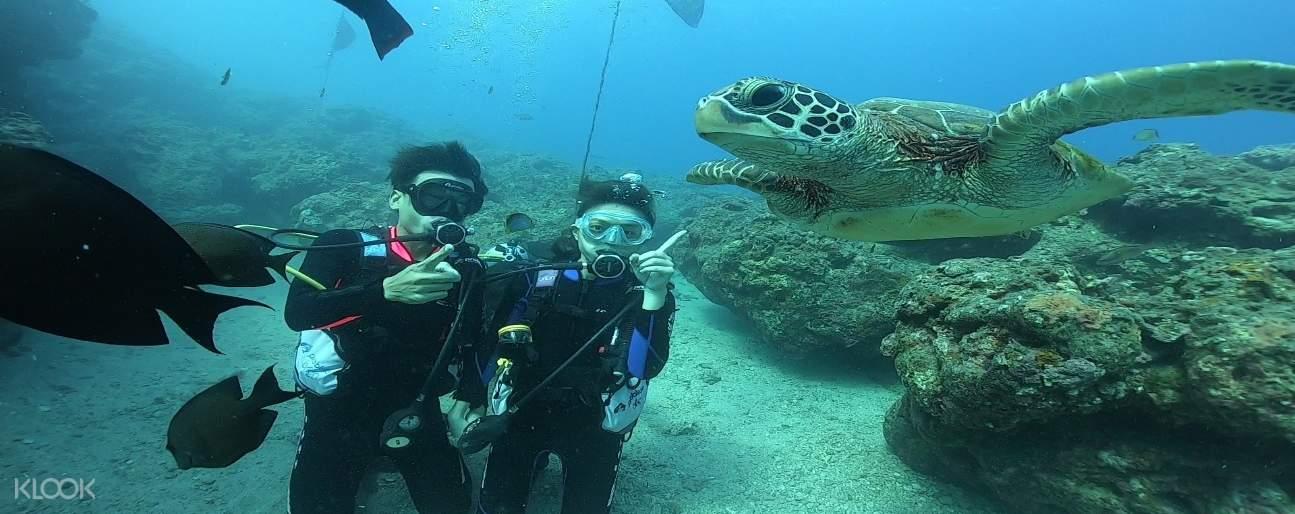 【小琉球潛水證照】 PADI OW 三天兩夜開放水域潛水員課程