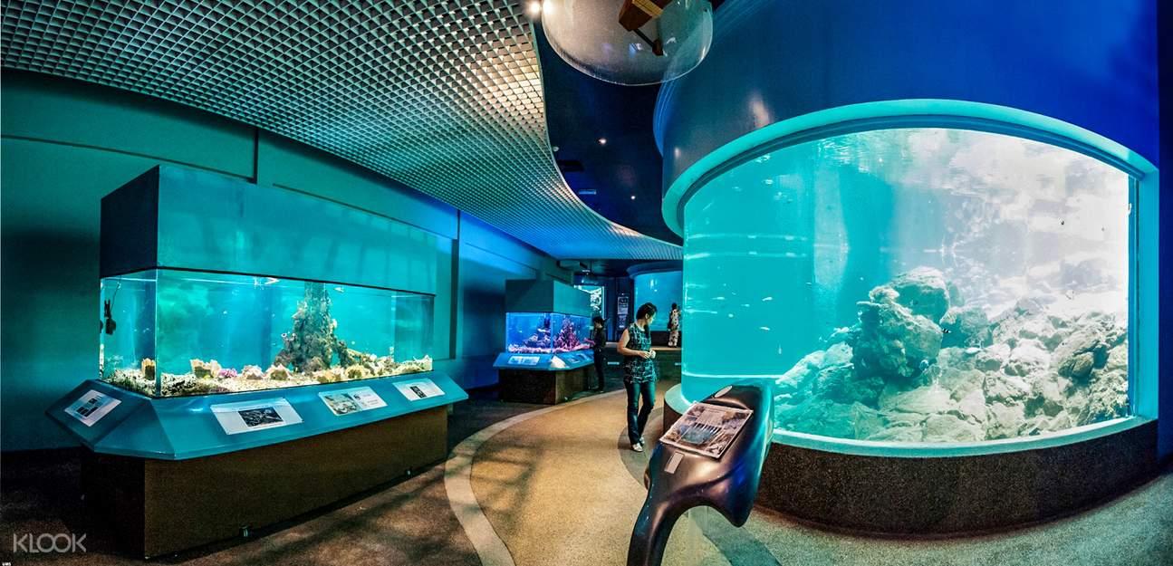ums aquarium
