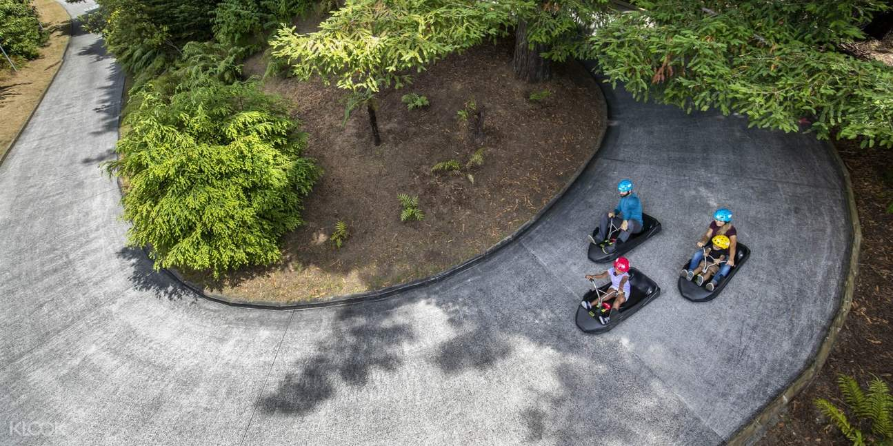 Luge Ride with Family