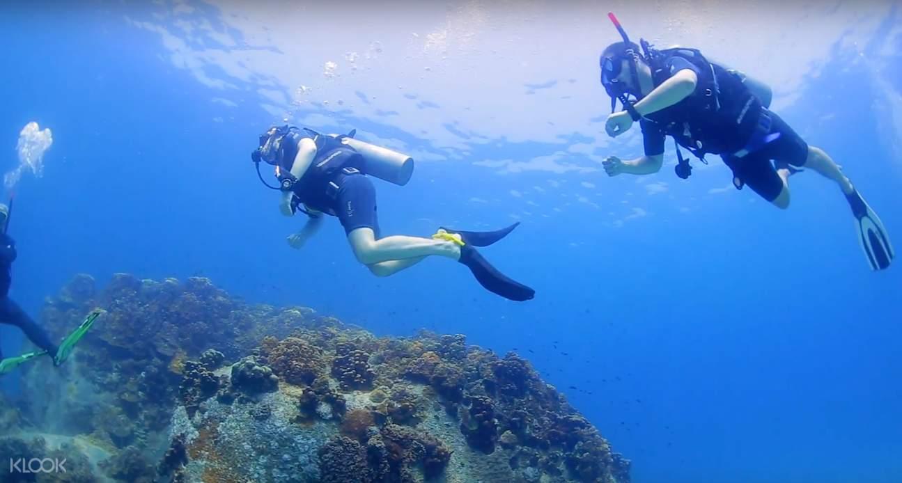 discover scuba diving course in koh samui