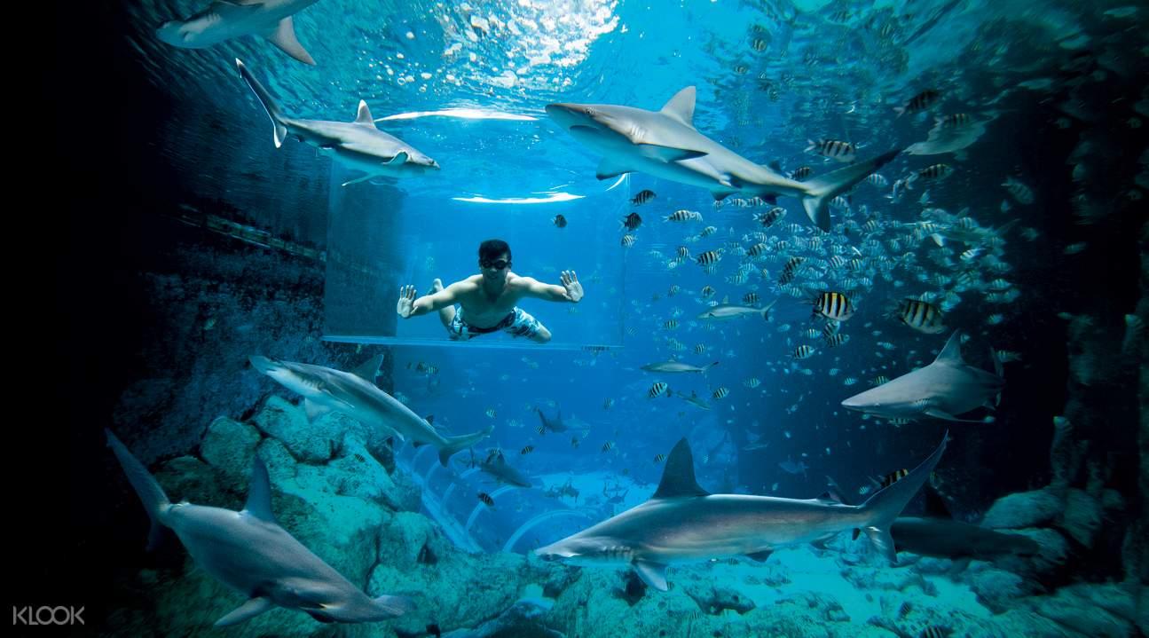 新加坡圣淘沙水上探险乐园门票
